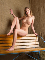 Busty fair-haired model posing naked on the wooden bench